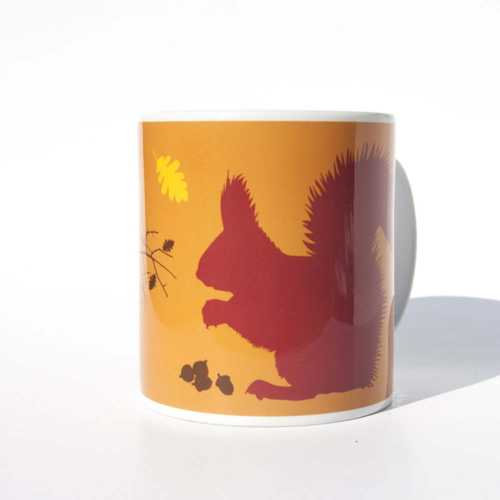 ake District Red squirrel mug